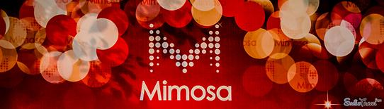 SmileTravel-Mimosa-18