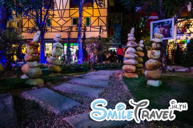 SmileTravel-Mimosa-2