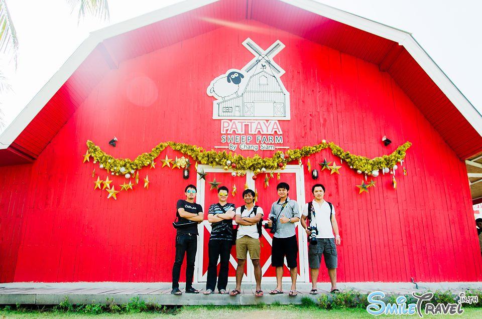 Pattaya Sheep Farm 5 noom